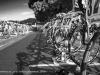 triathlon_lerici_2012_00_pre_si-029
