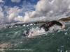 triathlon_lerici_2012_01_st_da-_mg_9120